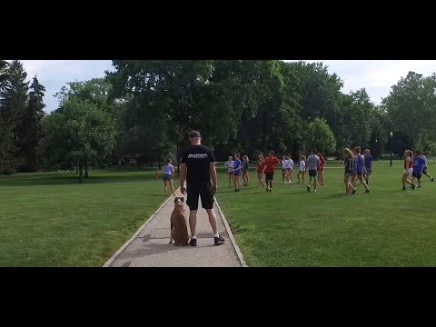 Best Dog Training in Columbus, Ohio! 3 Day Private Seminar with 9 Month Old Boxer, Dempsey!