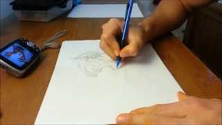 Drawing Pokemon: Yveltal