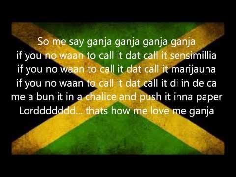 Marlon Asher - Ganja Farmer Lyrics