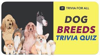 Dog Breeds Trivia Quiz