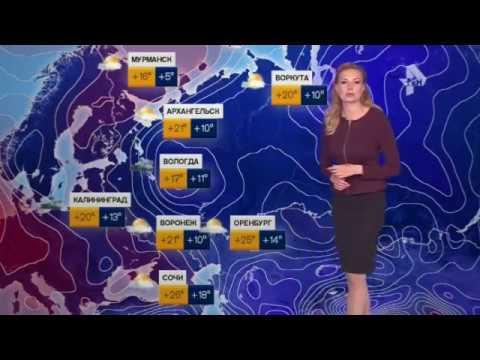 Погода сегодня, завтра, видео прогноз погоды на 3 дня 8.7.2017