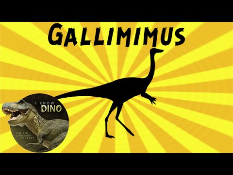 Gallimimus: Dinosaur of the Day