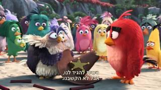 טריילר חדש - אנגרי בירדס הסרט - 12.5 בקולנוע