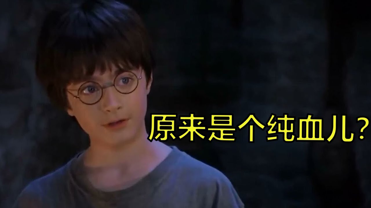看了10多年,所以哈利是纯血巫师吗?
