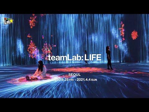 teamLab: LIFE