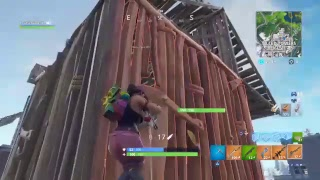 Worlds worst fortnite glitch