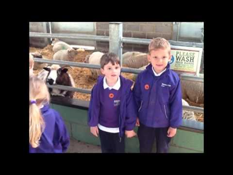 Reception | Visit to Bocketts Farm