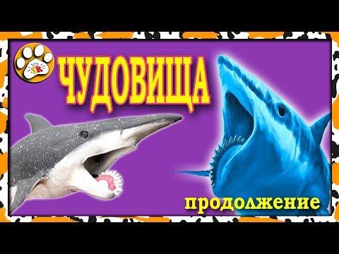 ПОЛНЫЙ обзор ЧУДОВИЩА морских глубин Big Animal World (ЧАСТЬ 2)