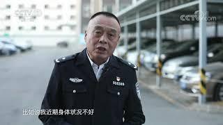 《生活提示》 20191211 老年人驾驶要量力而行| CCTV