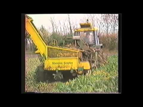Standen Celebrates 40 Years Manufacturing Sugar Beet Harvesters 1986