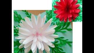 DIY Basteln lernen. Pop-Up 3D Blumen-Karte mit Pfingstrose selber machen