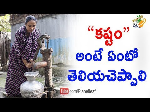 Children's Need to Know The Value Of Hard Work || Personality Development  || Planet Leaf