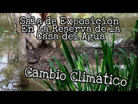 Exposición Cambio Climático en Casa del Agua en Pantanos de Centla