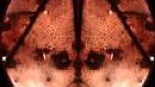 "RICHARD BONE ambient video ""Autumna Falls"""