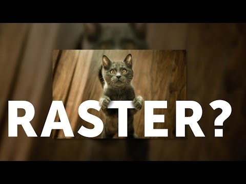 What Is A Raster Image?