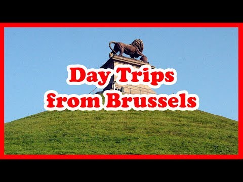5 Top-Rated Day Trips from Brussels, Belgium | Europe Day Tours Guide