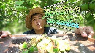 กินมะนาวก้อยปลาร้าตัว-ก้อยกินคาต้น-คำโอ๊ะๆ-joe-channel