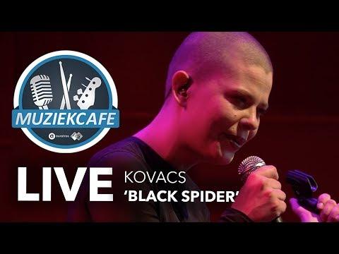 Kovacs - 'Black Spider' live bij Muziekcafé