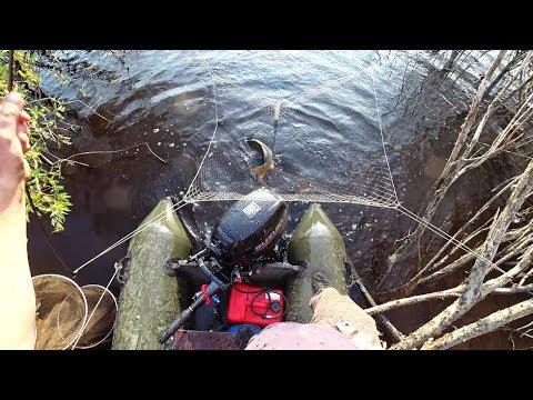Рыбалка на паук карпа