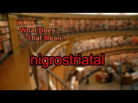 What does nigrostriatal mean?