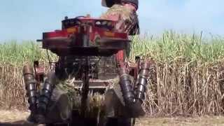 Gambar cover Usina Noble Bioenergia Catanduva (Cerradinho) Video HD