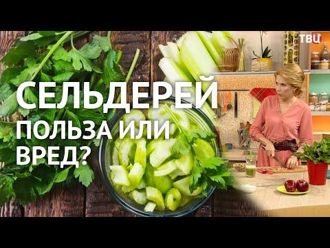 Сельдерей. Чем полезен и вреден. Рецепты из сельдерея. Можно ли похудеть на сельдерее