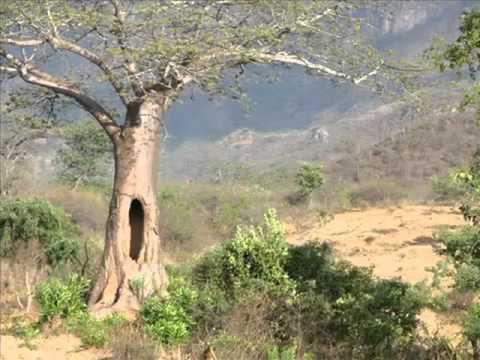 Angola - Serra da Leba - Huila