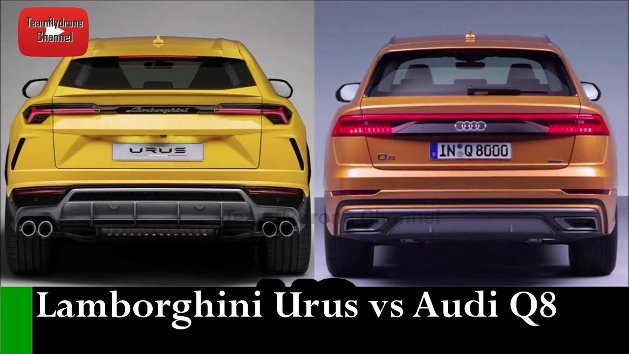 2019 Audi Q8 Vs 2019 Lamborghini Urus Pagebd Com