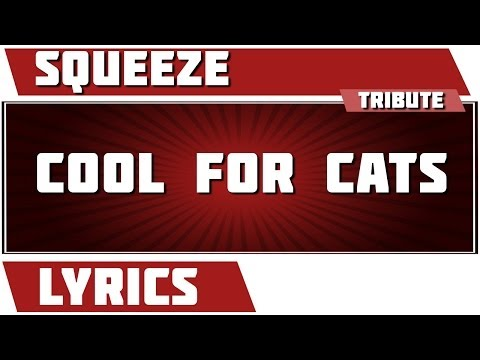 Cool For Cats - Squeeze tribute - Lyrics