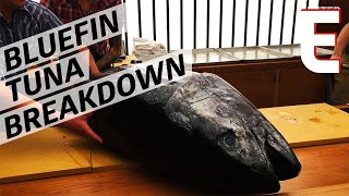 How to Break Down A 155 Pound Sustainably-Caught Bluefin Tuna — The Process