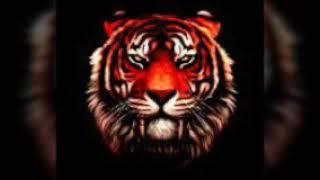 Клип мой брат тигр
