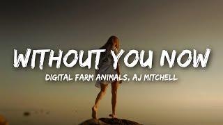 Digital Farm Animals, AJ Mitchell - Without You Now (Lyrics)
