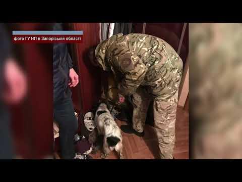 Телеканал ALEX UA - Новости: Вилучили наркотики і патрони
