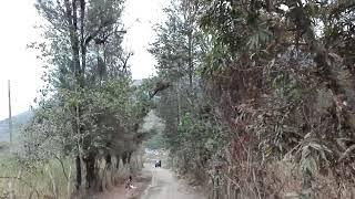 Montero (Piura): turismo de vista panorámica de la ciudad de Montero