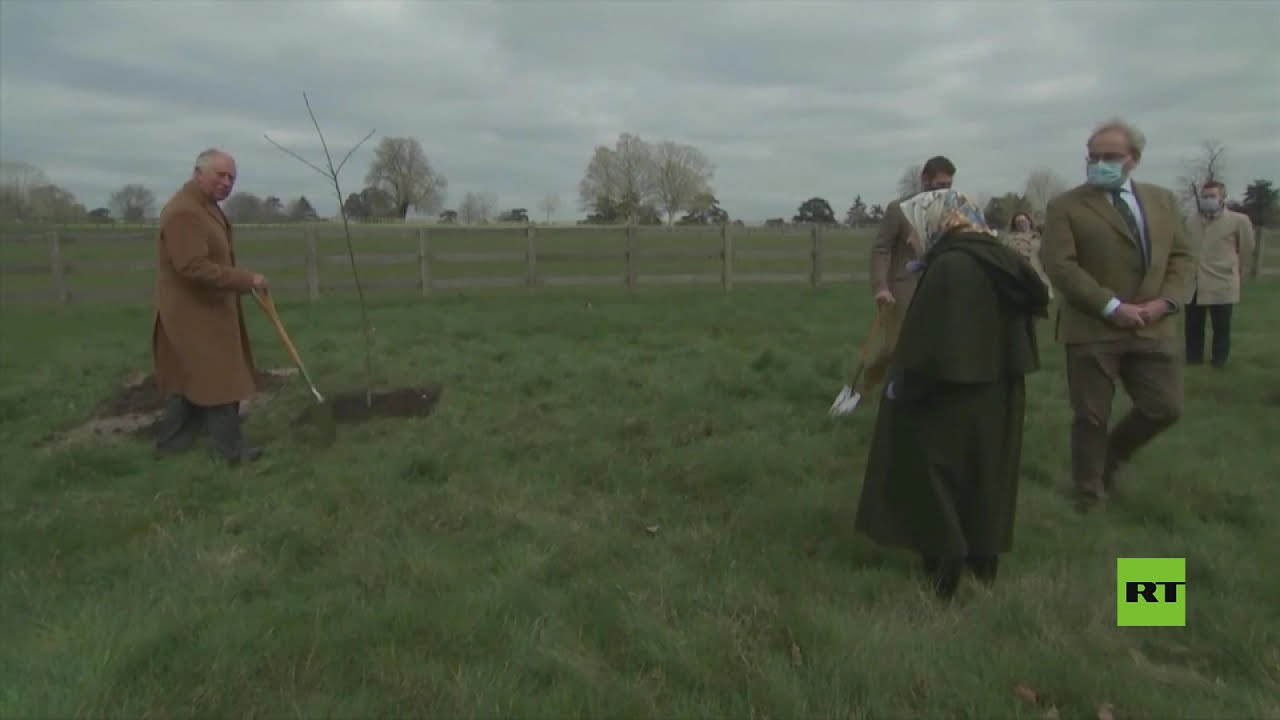 شاهد.. الأمير تشارلز يغرس شجرة والملكة إليزابيث تراقب  - نشر قبل 2 ساعة