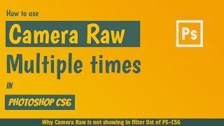 Camera Raw Filter