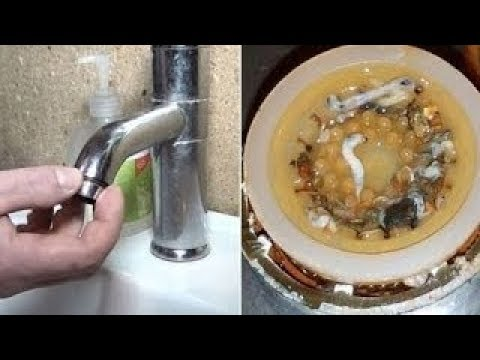 Surprisingly Gross Things You Need to Clean, Life Hacks!