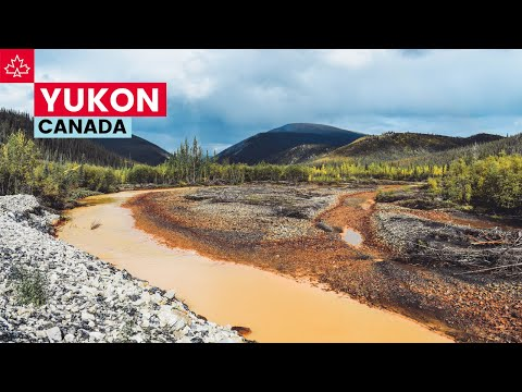 Canada Road Trip: Best Things To Do In The Yukon