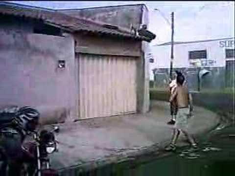 PIT BULL ESCALANDO MURO - VEJITA