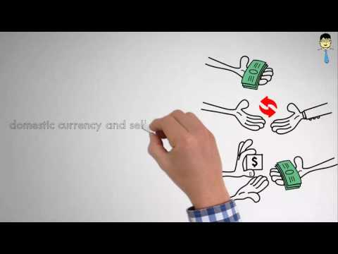Video 11 Exchange Rate Policy