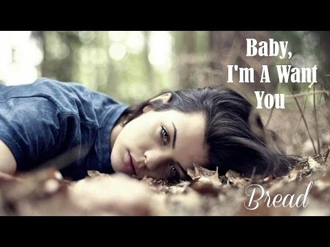 Bread – Baby I'm-a-Want You Lyrics | Genius Lyrics