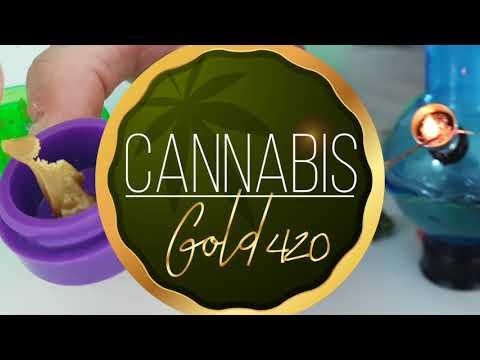 CANNABIS GOLD 420 - Un canal para los amantes del cannabis y las extracciones THC