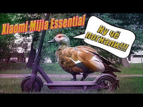 Электросамокат Xiaomi Electric Scooter Essential -Новинка 2020г
