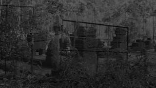 Rợn người camera vô tình quay được bóng ma bước ra từ ngôi mộ cổ