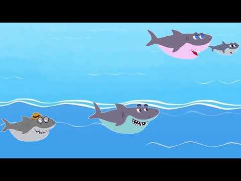Развивающие и обучающие мультики-Акуленок