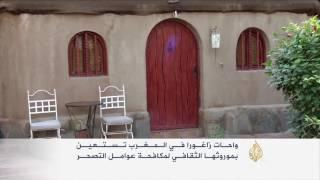 واحات زاغورا في المغرب تستقطب الزوار