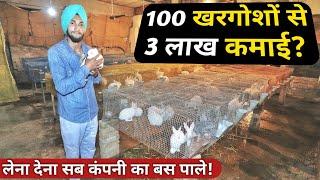 विदेश छोड़ खरगोश पालता|Rabbit🐰 Farming Profit Business|How Start Rabbit Farm