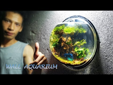HOME DECORATION - DIY WALL MOUNT FISH TANK