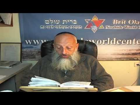 Где в Торе упомянуты заповеди Бней Ноаха