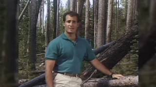 Classic Cantore Moments From the Past 30 Years #cantore30